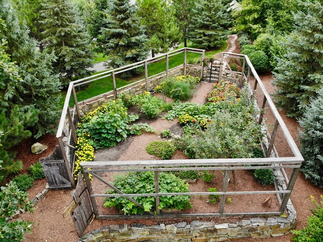 Planning Your Edible Garden Is Important This Is Why