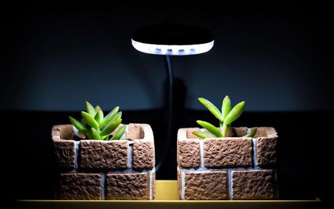 Using Artificial Light